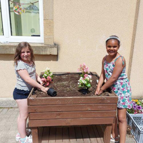 Les élèves de 2ème année embellissent notre école 🌷🥀🌺🌸🌻